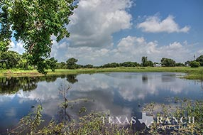 Live water ranch 1099 acres, Jackson county image 1