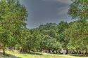 10 acre ranch Blanco County image 40