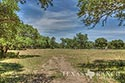 10 acre ranch Blanco County image 41