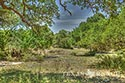 10 acre ranch Blanco County image 42