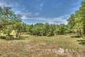 10 acre ranch Blanco County image 47