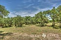 10 acre ranch Blanco County image 48