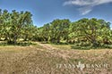 10 acre ranch Blanco County image 49