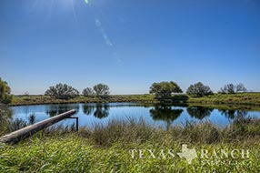 South Texas ranch 1176 acres, Zavala county image 1