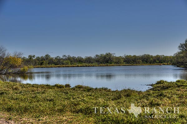 Zavala County 1176 Acre Ranch Image Gallery.