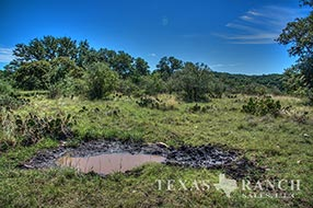 Live water ranch 123 acres, Real county image 1