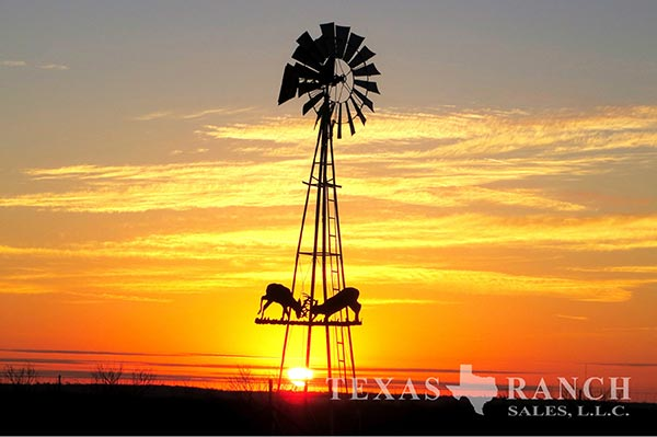 McLennan County 134 Acre Ranch Image Gallery.
