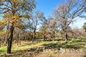134 acre ranch McLennan County image 18
