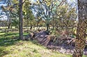 134 acre ranch McLennan County image 33