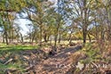 134 acre ranch McLennan County image 34