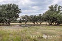 1527 acre ranch Medina County image 15