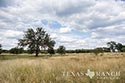 1527 acre ranch Medina County image 17