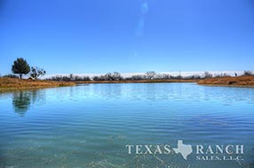South Texas ranch 1761 acres, Zavala county image 2