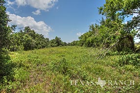 Hill Country ranch sale 178 acres, Jackson county image 2