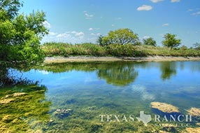 Central Texas hunting ranch sale 214 acres, Hamilton county image 2