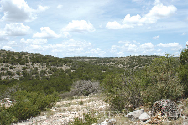 ranch 2833 acres Val Verde county
