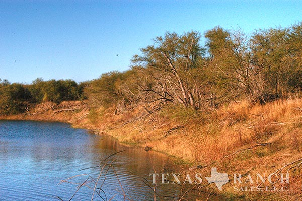 Live water ranch 321 acres, Live Oak county image 1