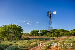 South Texas ranch 3235 acres, Zavala county image 1