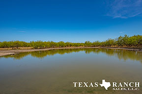 South Texas ranch 342 acres, Zavala county image 1