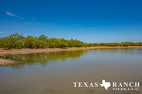 Ranch real estate image 342 acres Zavala County