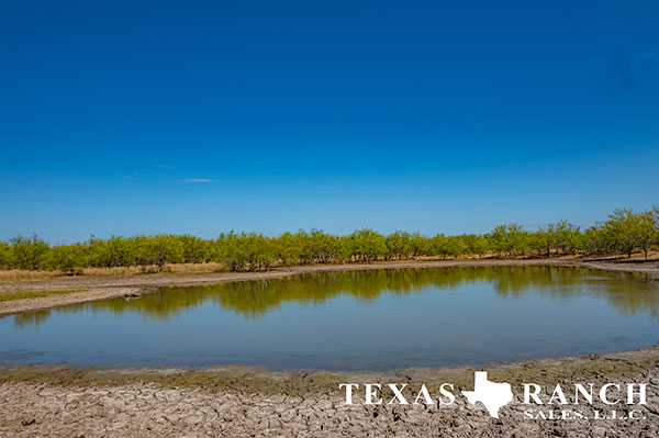 Zavala County 342 Acre Ranch Image Gallery.