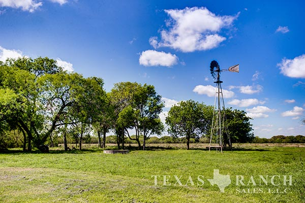 South Texas ranch 349 acres, Bee county image 1