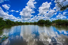 South Texas ranch 744 acres, Webb county image 1