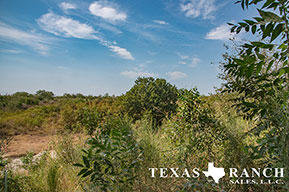 Ranch sale 44 acres, Uvalde county image 2