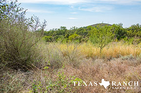 Ranch sale 44 acres, Uvalde county image 1