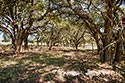 483 acre ranch Lampasas County image 17