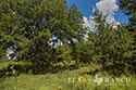 483 acre ranch Lampasas County image 45