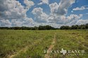483 acre ranch Lampasas County image 48