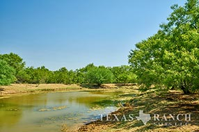 South Texas ranch sale 549 acres, La Salle county image 2