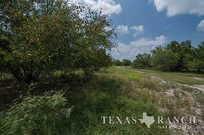 South Texas ranch 610 acres, Zavala county image 1