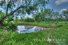 South Texas ranch 640 acres, Zavala county image 2