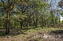 705 acre ranch Medina County image 10
