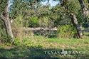 705 acre ranch Medina County image 14