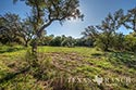 705 acre ranch Medina County image 31