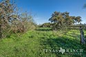 705 acre ranch Medina County image 33