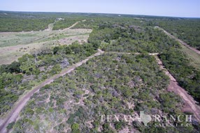 Ranch sale 721 acres, Medina county image 1