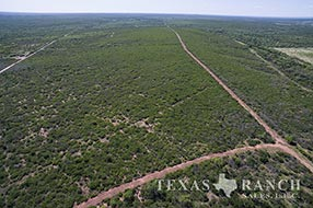 Ranch sale 721 acres, Medina county image 2