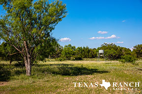Ranch real estate image 740 acres Concho County