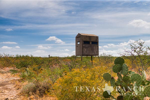 Ranch real estate image 818 acres Kinney County