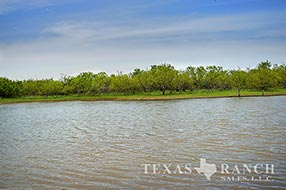 South Texas ranch 840 acres, Zavala county image 1